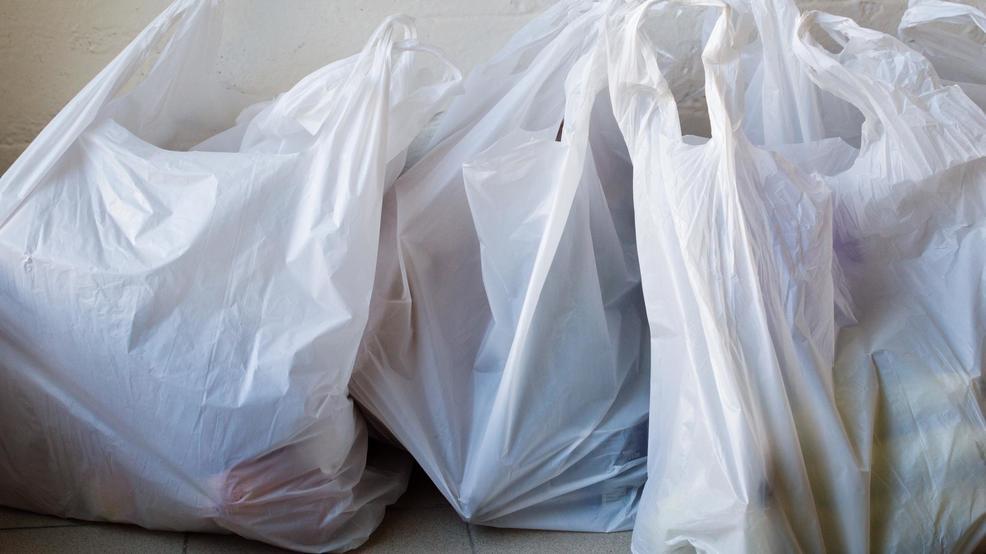 Maine Senate votes to ban single-use plastic bags