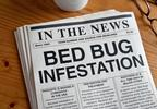 What to Do if You Think You Have Bedbugs