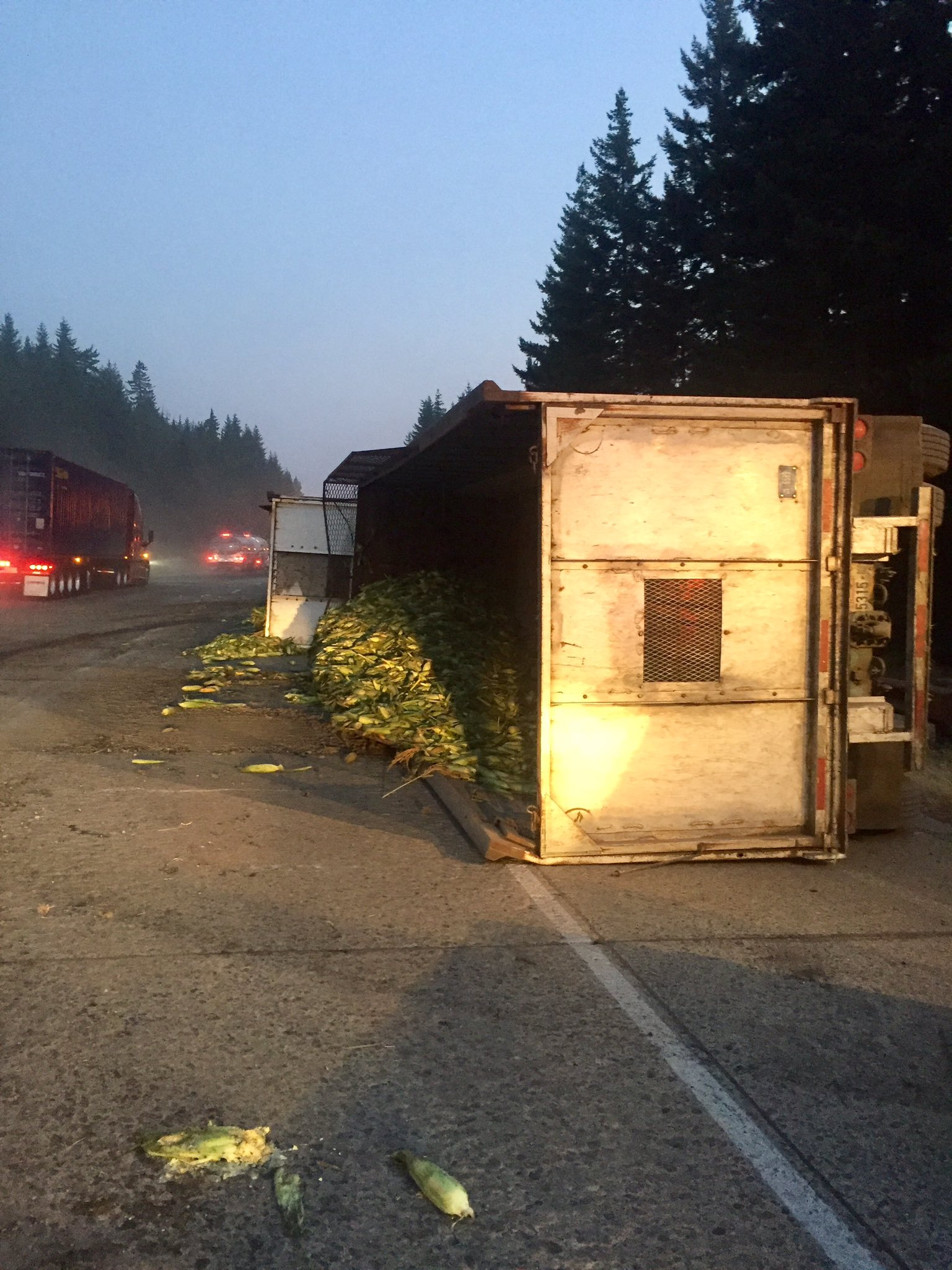Corn strewn across I-90 near Snoqualmie Pass after two semi trucks collide (Photo: Washington State Patrol)