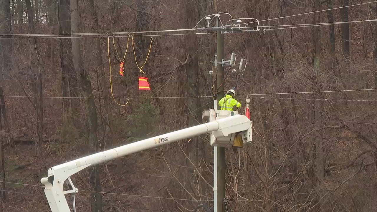 <p>A downed tree caused a power outage by the Asheville Mall on Friday, leaving more than 40 customers in the dark. (Photo credit: WLOS Staff)</p>