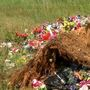 Families seeking answers after flowers, memorabilia taken off loved ones' graves