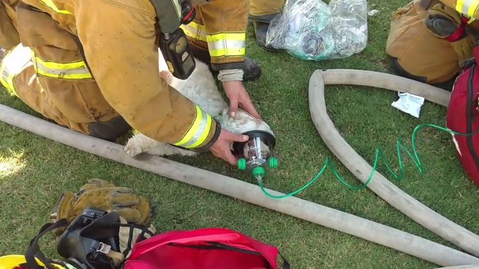 how to qualify as a firefighter in the bakersfield fire department