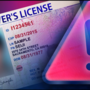 Sister accused of having sister impersonate her for license
