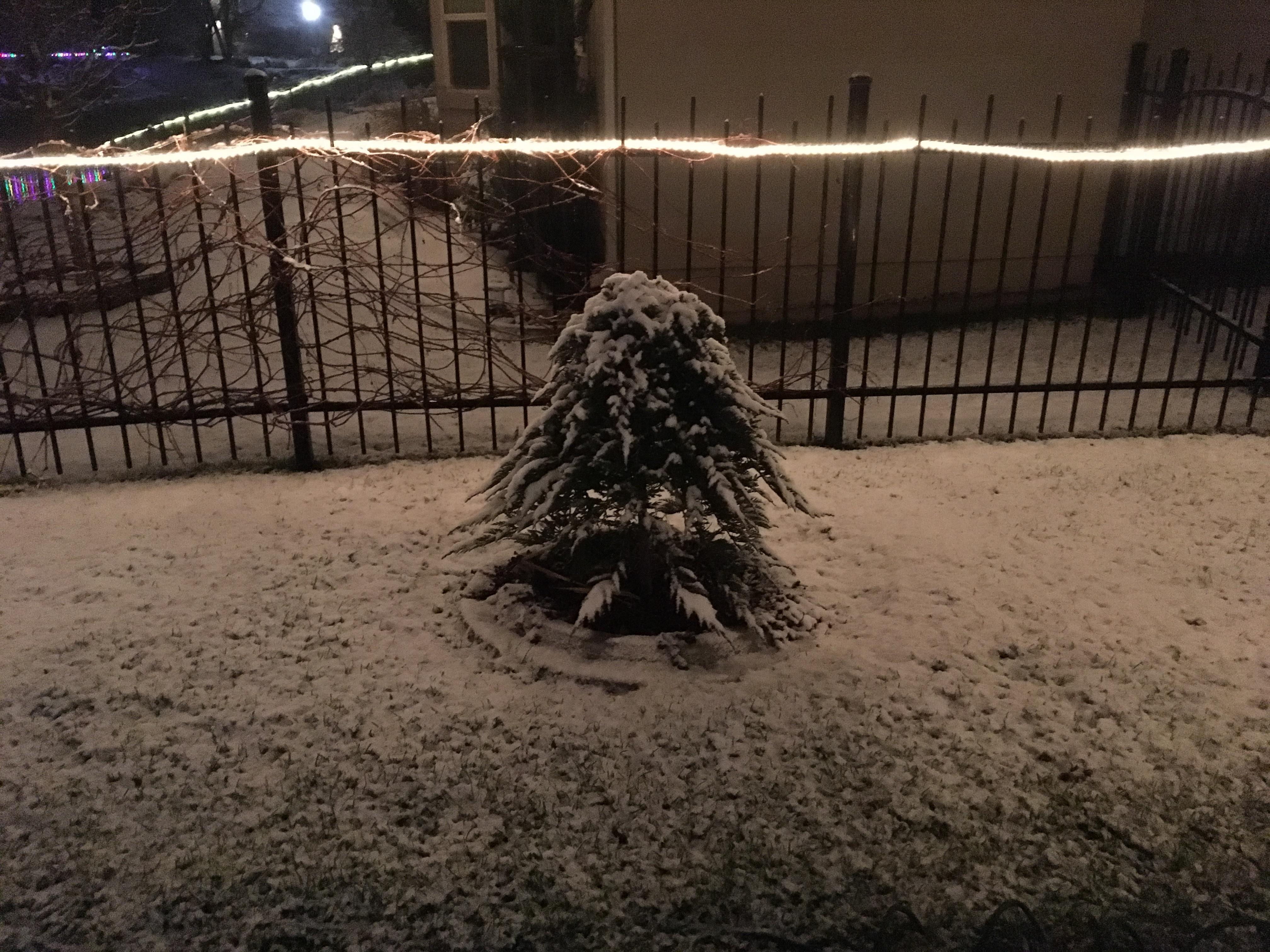 The Treasure Valley saw its first significant snowfall on Friday night. These are some images our viewers captured and shared with us. We love seeing your photos so keep them coming! Send them to us at: burst.com/IdahoNews<p></p>