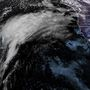 High Wind Warnings posted for Seattle as new storm likely to bring 60 mph gusts