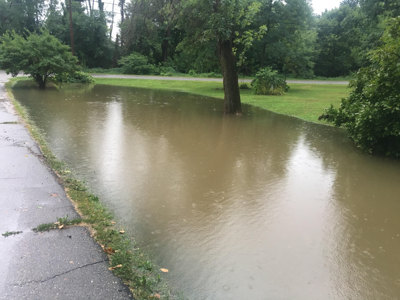 "A flooded yard near Three Rivers, Mich.  Owner said the flooding in his yard happens ""every time it rains."" (Brad Slaton)"