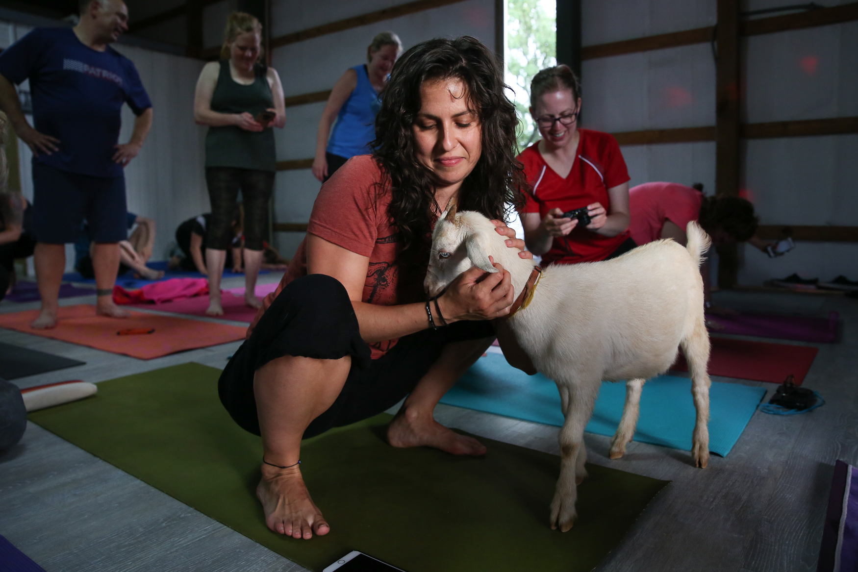 Dozens of yogis and goat lovers crammed their mats and water bottles into the barn of Four Hills Farm in{ }Catharpin, VA, on June 23 to find the center and play with goats. Although yoga is normally a relaxing workout for most people, the hour-long session was interrupted with fits of giggles as baby goats hopped on people's backs, nibbled on pony tails or stopped for a bottle feeding. The yoga sessions are normally held at the Little Goat Farm at the Lake in nearby Nokesville, VA, but the event (and the goats) were moved indoors due to heavy rains. The evening also included live music, kombucha samples and plenty of selfie opportunities. The rain wasn't too much of a detractor though - at one point in the class, a rainbow appeared and ended in the farm's yard. Don't worry if you missed this yoga session, The Little Goat Farm at the Lake will offer more goat yoga throughout the summer. (Amanda Andrade-Rhoades/DC Refined)