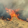Wildfire in Gilliam County burns 31,000 acres