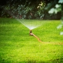 Watering Lawns Dropping to Once a Week