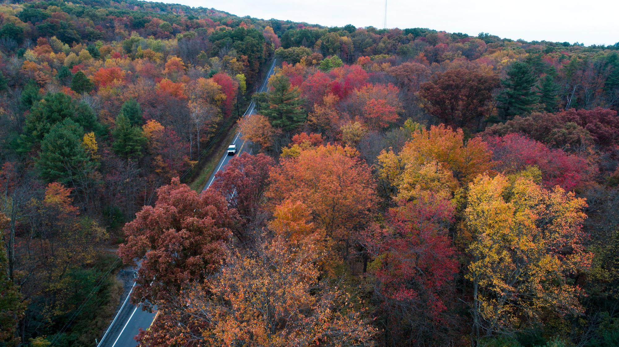 FILE - This Monday, Oct. 23, 2017 file photo show fall colors beginning to show along Route 209 in Reilly Township, Schuylkill County, Pa. Across the United States, 2017's first freeze has been arriving further and further into the calendar, according to more than a century of measurements from weather stations nationwide. (David McKeown/Republican-Herald via AP)