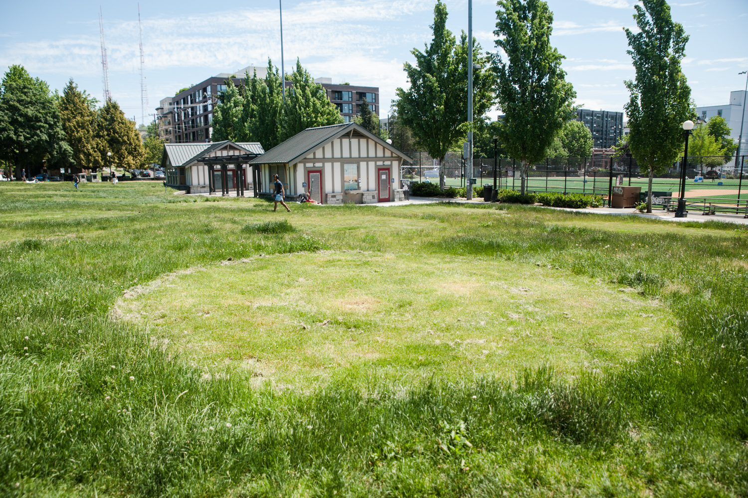 Many of our parks have seen overgrowth in the past few months as self-isolation and quarantine has kept maintenance teams home along with the rest of us. Earlier this week, neighbors of Capitol Hill's Cal Anderson Park noticed that the park's grass had finally been mown - kinda. 'Social distancing circles' were mowed into the park's lawn, as a way to encourage maintaining six feet of space between those laying or sitting in the park. For now, Seattle Parks & Rec is trying out this model, but still encouraging folks to 'keep it moving' while in parks. (Image: Elizabeth Crook / Seattle Refined)