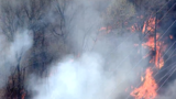 Fire crews battling brush fire in College Park near PEPCO sub-station
