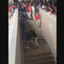 VIDEO: Eleven arrested in Theodore High School brawl