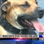 North Bend man credits dog with saving his life
