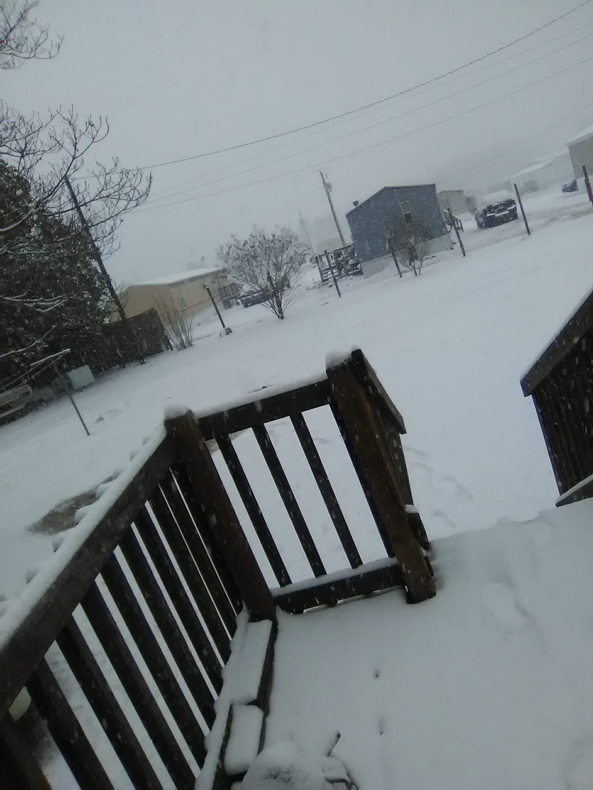 A snowy front yard{ }(Submitted by Blake and Shawnna Crowley)