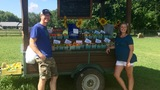 Couple lives out their dream of growing fresh produce for the community at Everlee Farm
