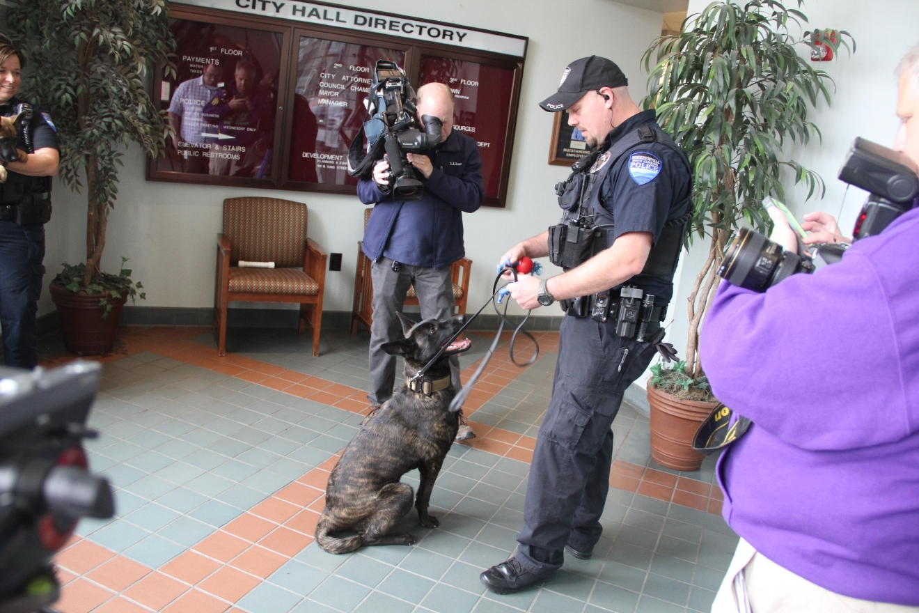 The Hendersonville Police Department introduces their two new K-9 officers, Ruger and Saber, on Wednesday, March 22, 2016. (Photo credit: WLOS Staff)