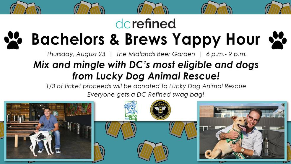 DC Refined Yappy Hour Flyer_final.jpg