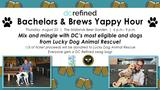 Come meet our 2018 class of eligible bachelors at Yappy Hour