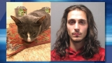 Pawtucket man accused of killing cat, owner speaks out
