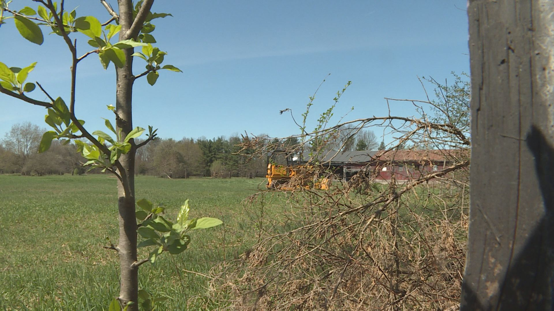 An investigation into a body found in this field is ongoing. // WSBT 22 photo