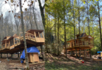 New treehouses coming to the Smokies. (Treehouse Grove at Norton Creek photos) (1).png