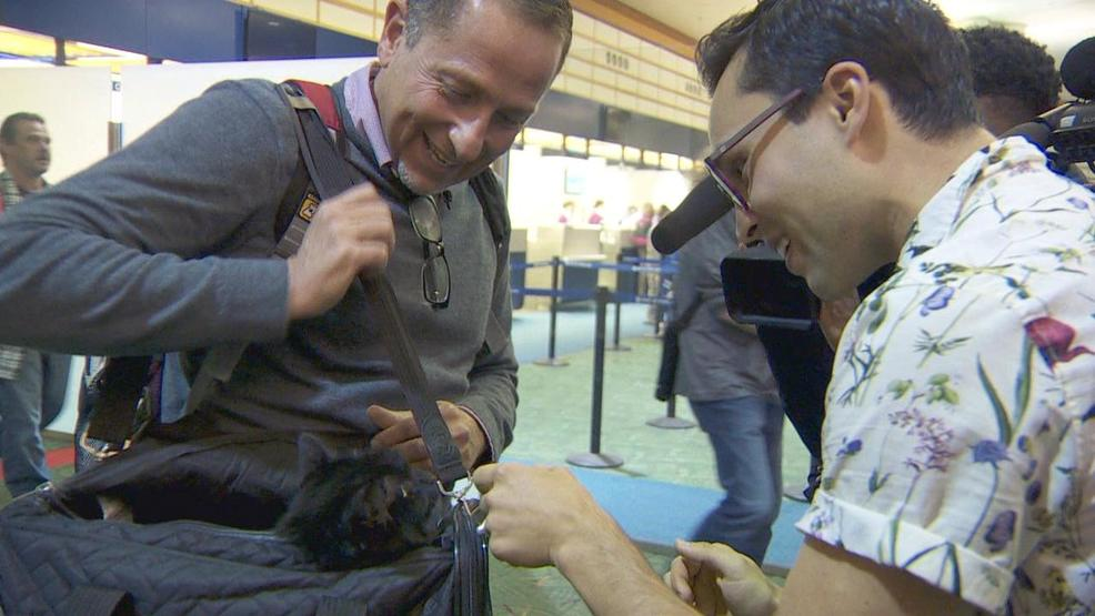 Joyous reunion at PDX: Cat back with owner after 1,200-mile journey