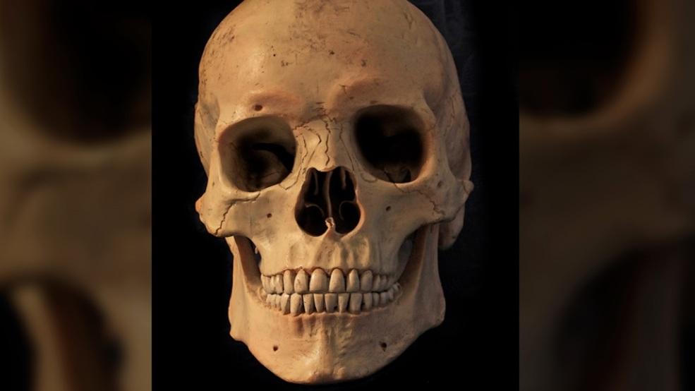Human Skull Found On Illinois Island Identified Wics