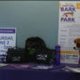 Bark in the Park event is halfway to fundraising goal