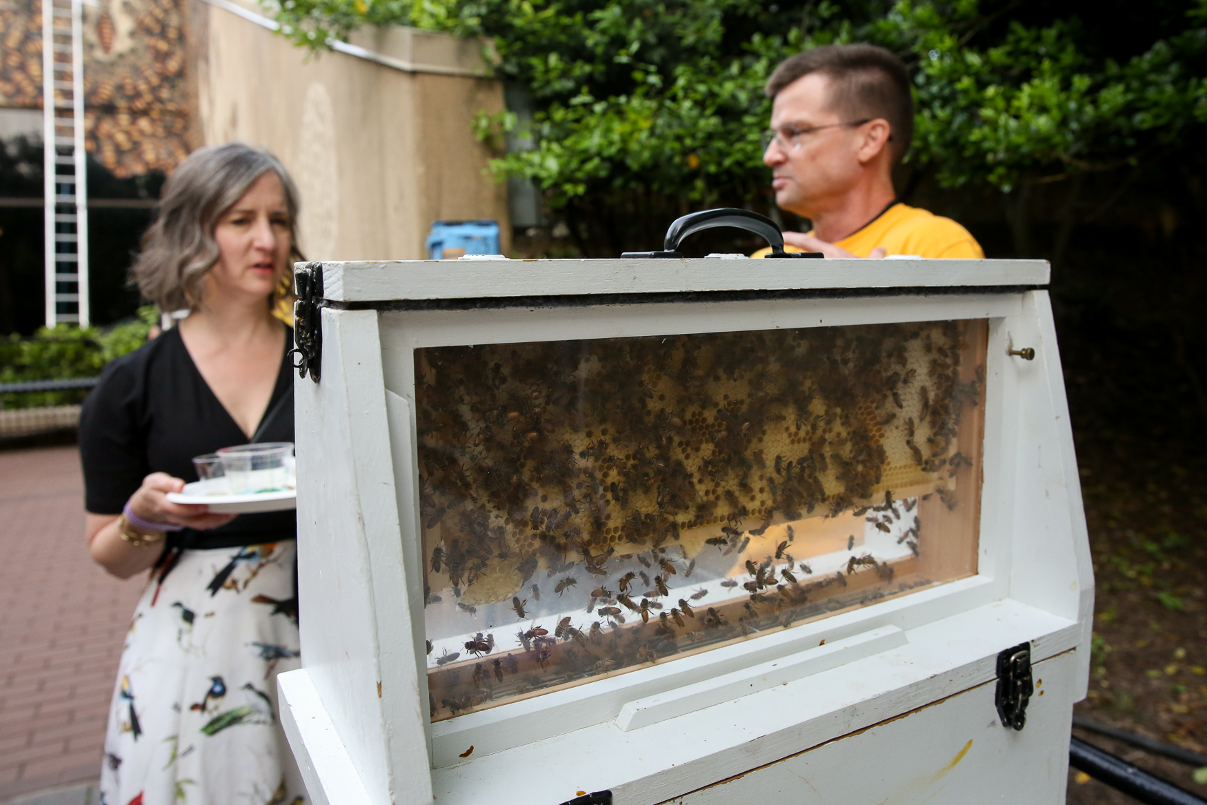 One display had live bees and local honey to show the importance of the insect.{&nbsp;} (Amanda Andrade-Rhoades/DC Refined)<p></p>