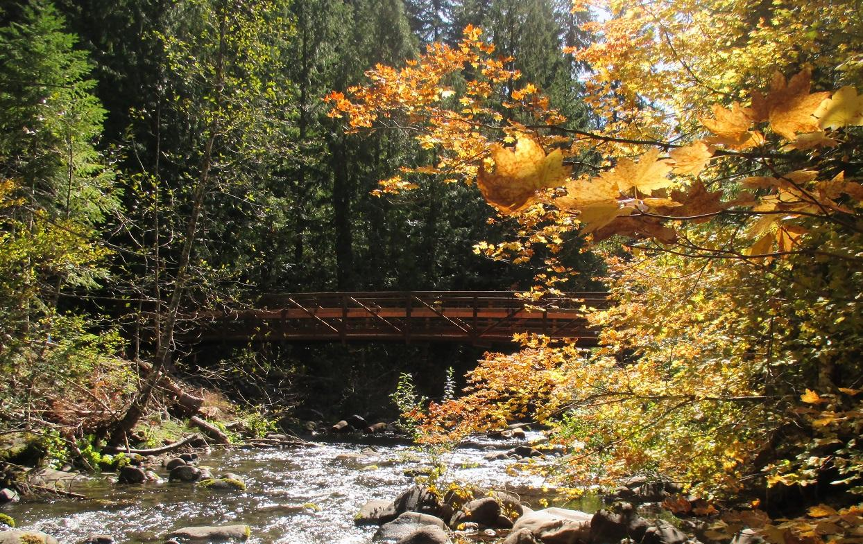 People can cross Deer Creek with ease when hiking or biking from Toketee Lake to the Umpqua Hot Springs with a new bridge spanning the creek. (Photo courtesy Umpqua National Forest)<p></p>