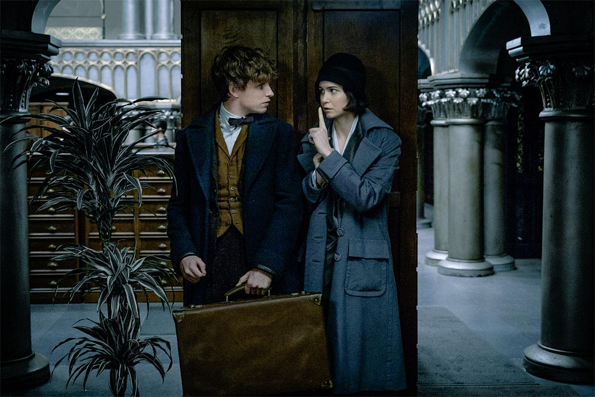"EDDIE REDMAYNE as Newt Scamander and KATHERINE WATERSTON as Tina in Warner Bros. Pictures' fantasy adventure ""FANTASTIC BEASTS AND WHERE TO FIND THEM,"" a Warner Bros. Pictures release.  Copyright: © 2016 WARNER BROS ENTERTAINMENT INC. ALL RIGHTS RESERVED. Photo Credit: Jaap Buitendijk"