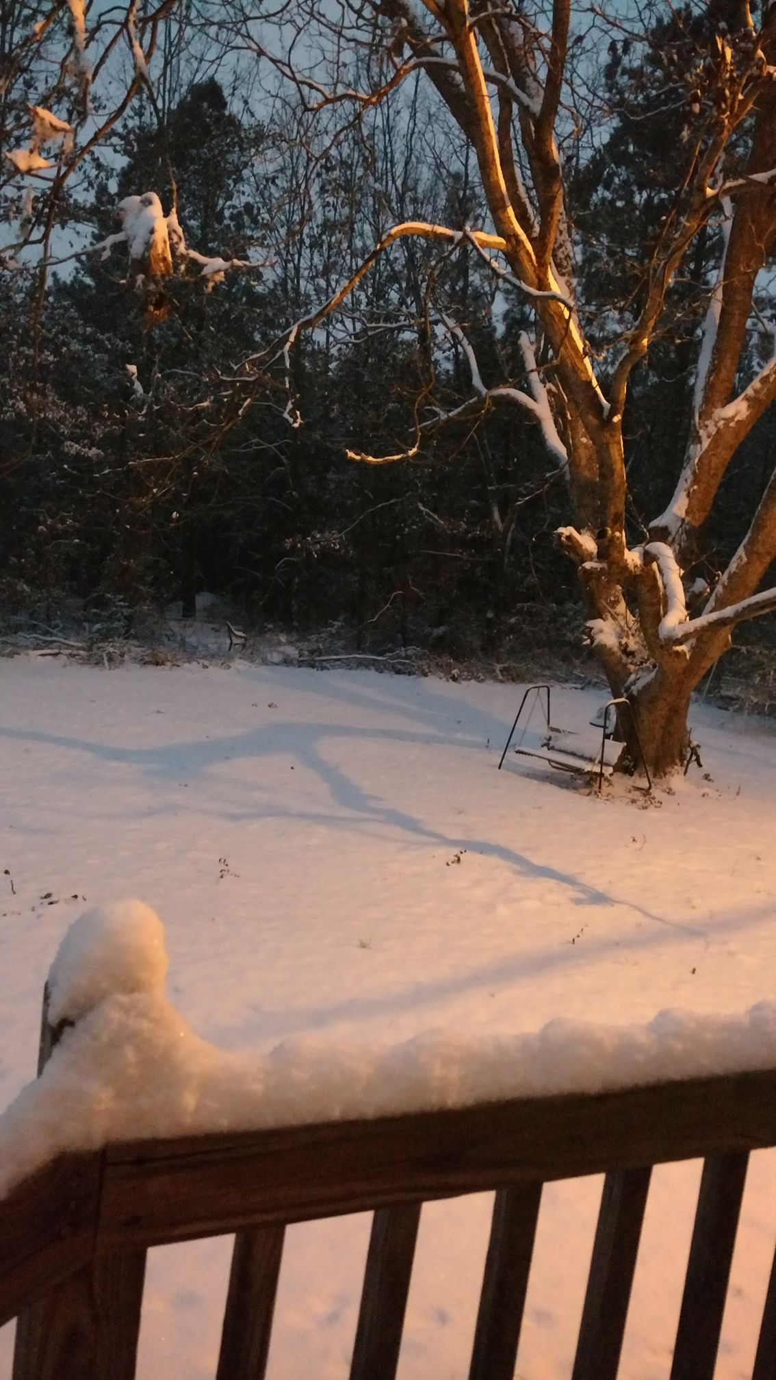 A very snowy swing in Hartsville (Submitted by Alicia Nichole Duvall)<p></p>