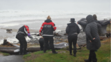 Women struck and injured by log; public asked to avoid Oregon beaches