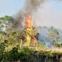 Brush fire scorches 120 acres in Port St. Lucie
