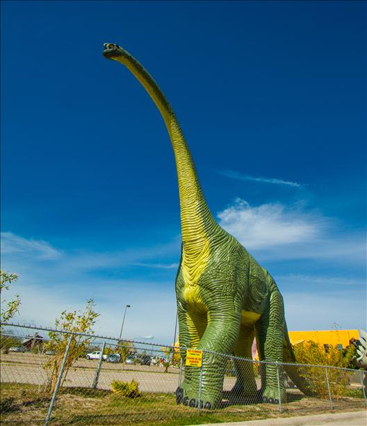 <a  href=&quot;http://share.valleycentral.com/Media/View/3051406&quot;>Dinosaur</a>