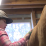 Family 411 - Therapeutic Horseback Riding