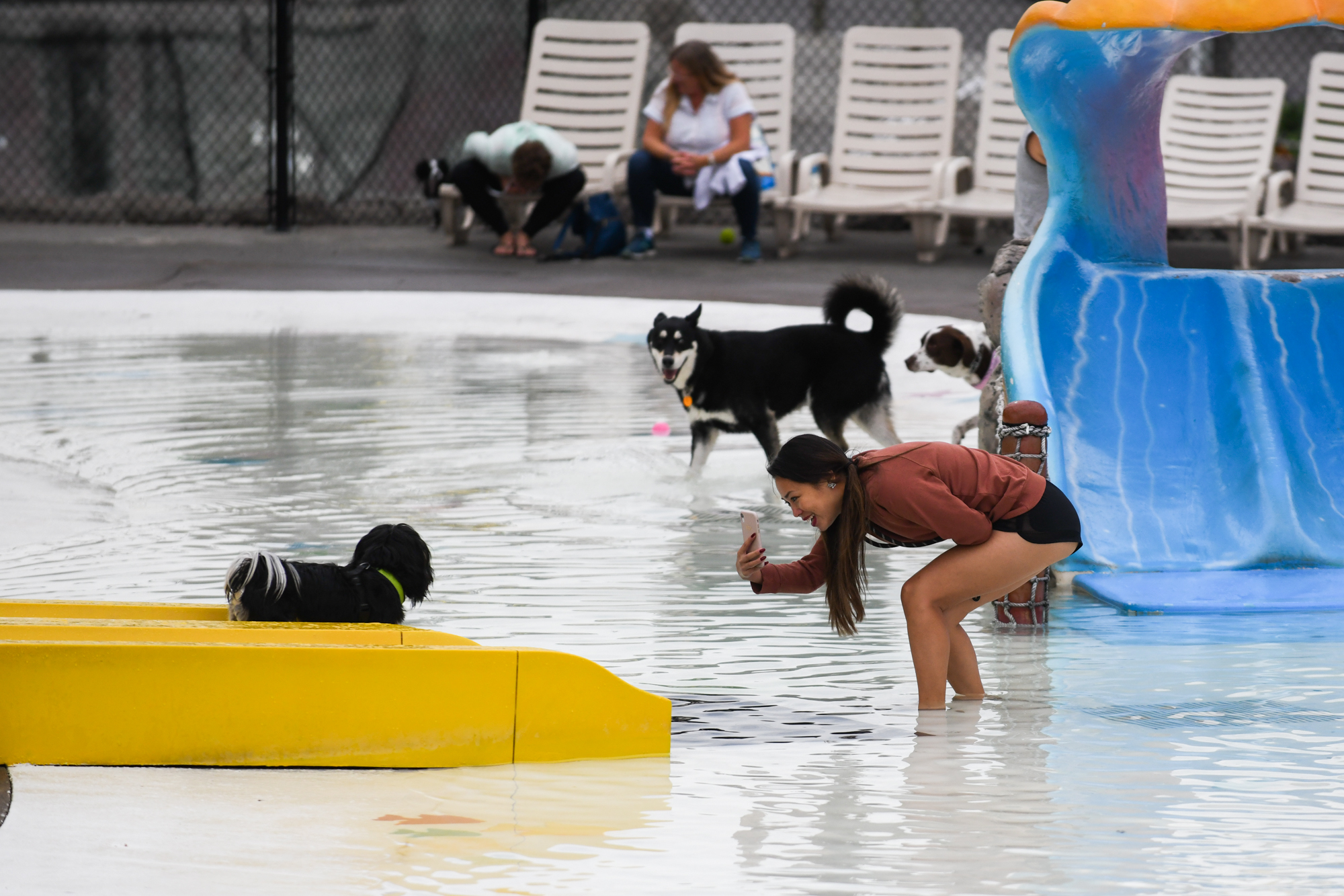 Well gosh darnit if this isn't the wildest thing Wild Waves has ever done! The theme & water park joined up with Seattle Humane to invite dogs and their owners to celebrate the end of summer at their first annual PAW-POOL-OOZA. While it's still technically summer, don't tell the weather - but in typical PNW form that didn't stop doggos and their families from splashing around the wave pool in delight.{ }The dog swim only celebration included special treats for pooches and their humans with a Yappy Hour, specialty food, vendors, live music and more. (Image: Chona Kasinger / Seattle Refined){ }