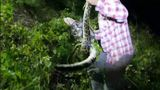Watch: Hunter saves alligator from python