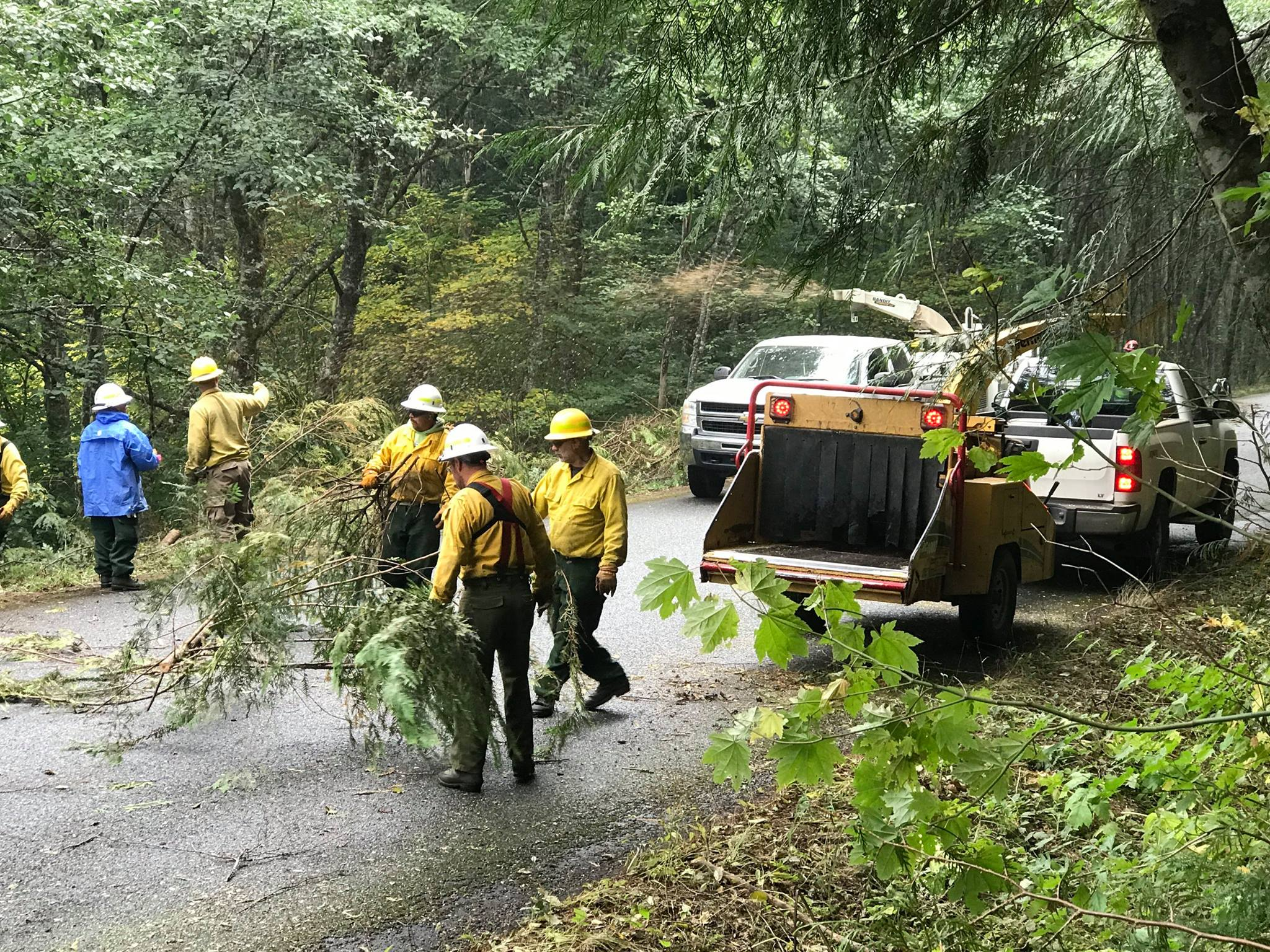 Crews perform tree removal operations on Forest Road 70, Sept. 26. (Photo: Norse Peak Fire Info)