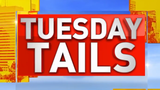 TUESDAY TAILS: Happy Tails for May!