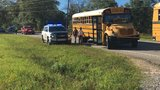 Two schoolbuses involved in collision on Lott Rd.