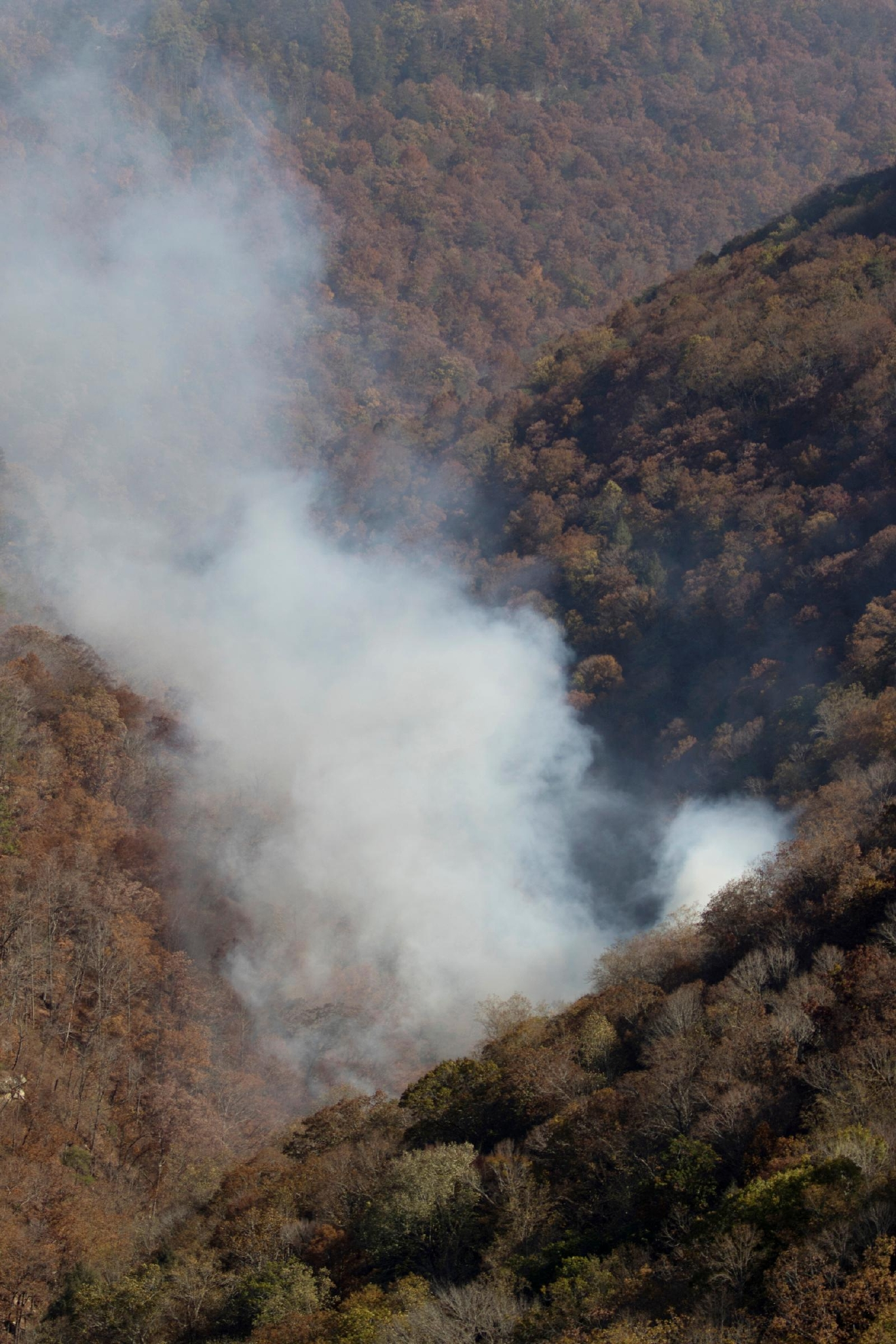 A wildfire burns in the North Chickamauga Creek Gorge along the Flipper Bend area of Signal Mountain, Tenn., on Wednesday, Nov. 9, 2016. Wildfires burning across the South have created a smoky haze over metro Atlanta and prompted a public health advisory in Kentucky, and the forests are expected to continue burning for days as flaming leaves fall to the ground and spread the flames. Other fires were burning in parts of Alabama, North Carolina and Tennessee. (Dan Henry/Chattanooga Times Free Press via AP)