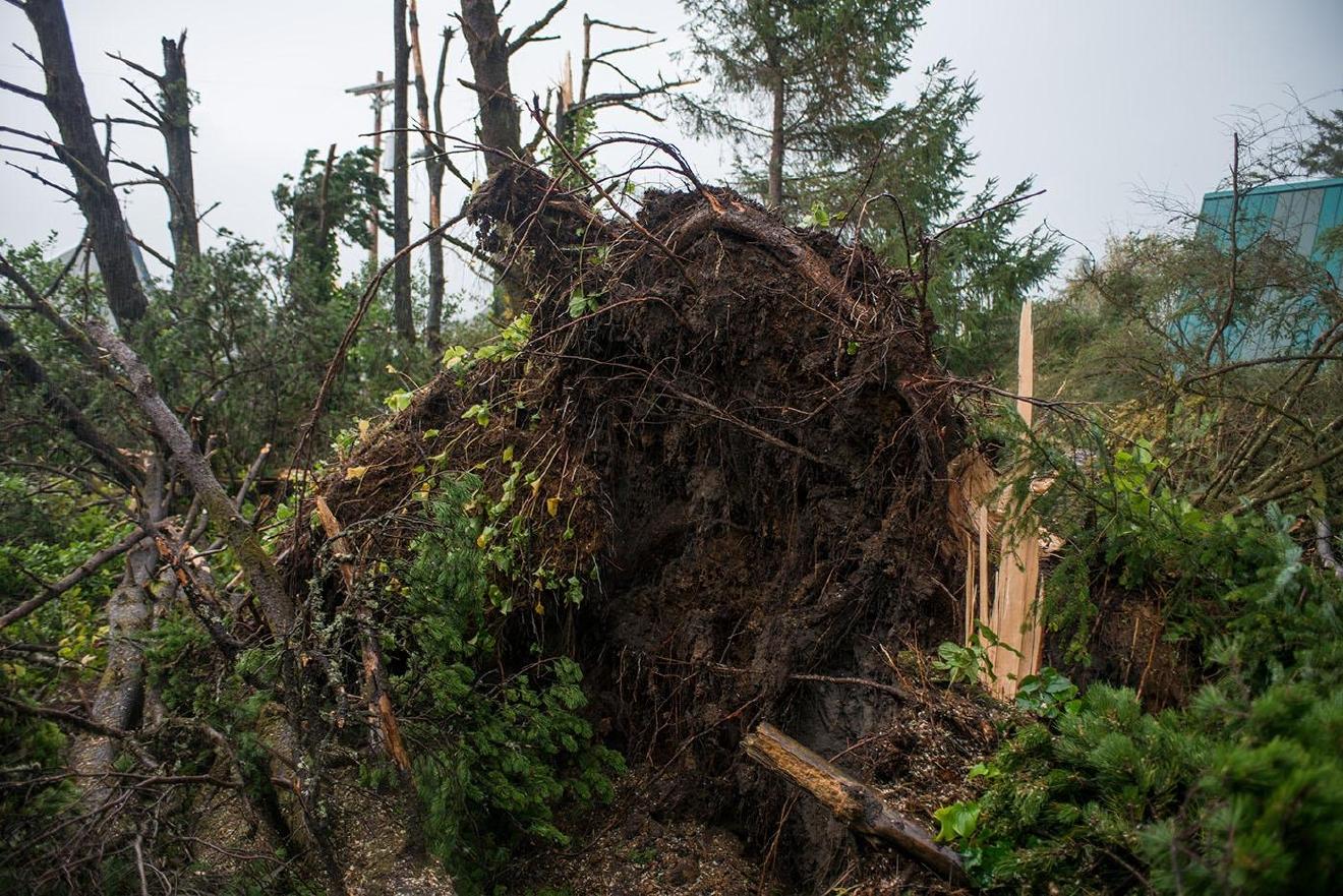 article rare tornado hits manzanita oregon