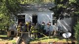 Several pets killed in house fire