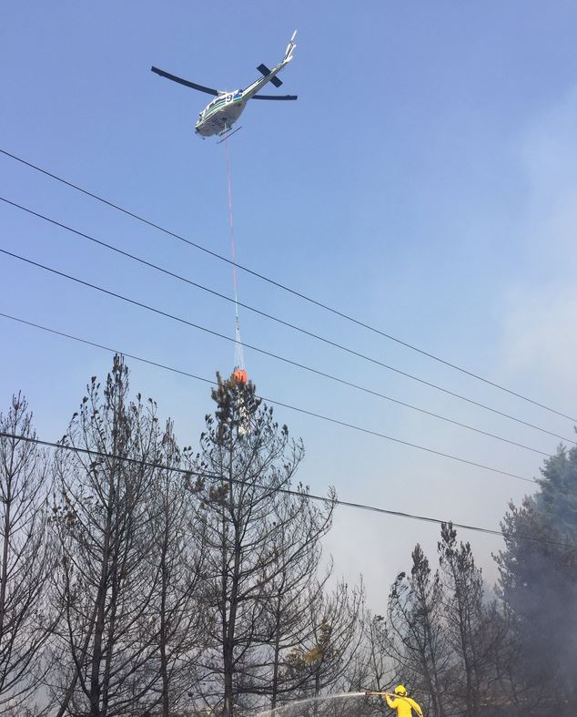 Several families were briefly evacuated Wednesday after fast-moving brush fire broke out near Centralia. (Photo: Centralia Fire & EMS)