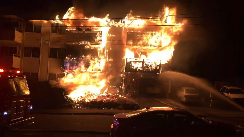 Barking dog credited with alerting residents to burning ...