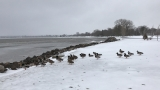 Wind shoves ice ashore at Lakeside Park