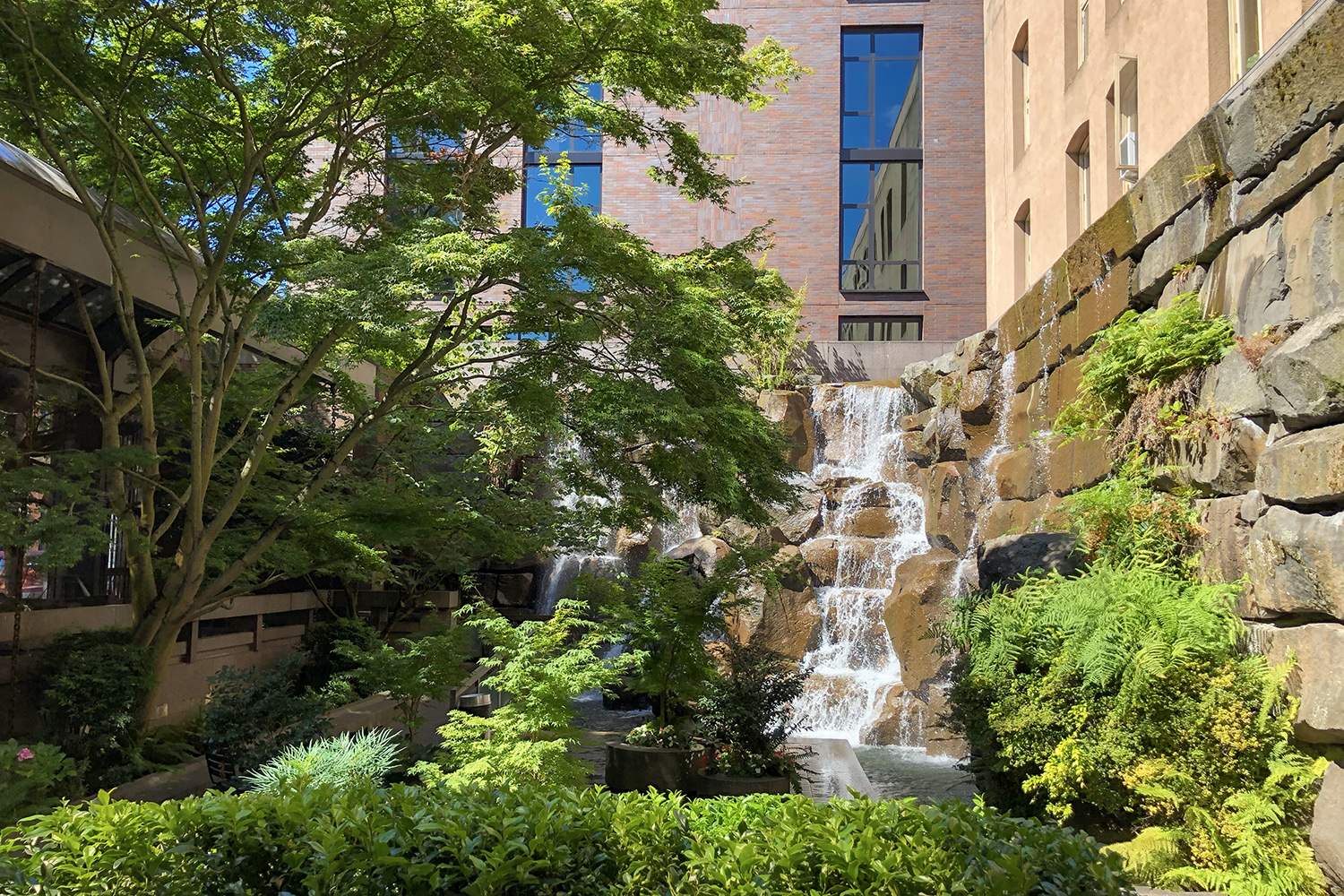 Hidden between Pioneer Square's busy streets, Waterfall Garden Park offers a small respite for 9-to-5'ers or tourists to pop in for a sip of coffee beside an urban, 22-foot waterfall. Fun fact: The garden is also known as UPS Park as it was built in 1978 to commemorate the original United Parcel Service headquarters building downtown. (Image: Rachael Jones / Seattle Refined)