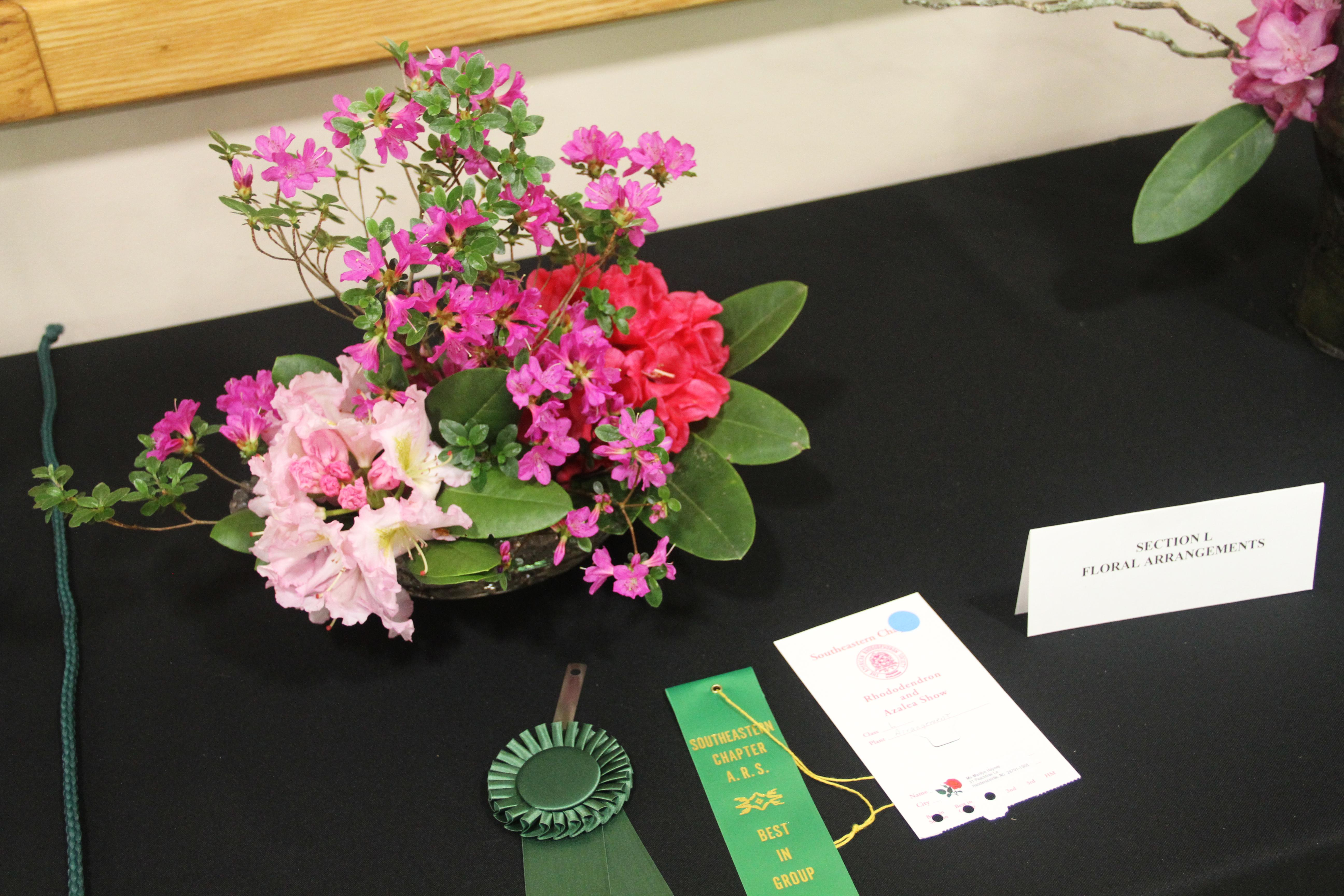 The North Carolina Arboretum hosts the 58th Annual Rhododendron and Azalea Flower Show on April 29-30, 2017. The event was presented by the American Rhododendron Society, Southeast Chapter. (Photo credit: Kelly Doty)